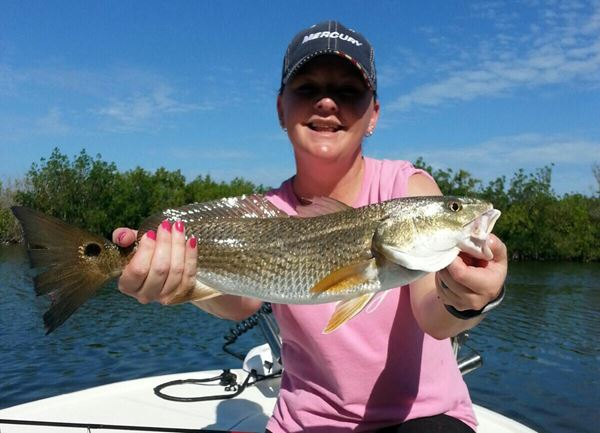 Florida sport fishing association gallery for Whiting fish florida